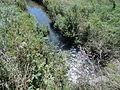 Gewässer mit Kennzahl15724 01.JPG