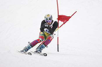 English: A Giant Slalom Alpine Ski Racer, raci...