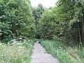 Gmina Krasnopol, Poland - panoramio (6).jpg