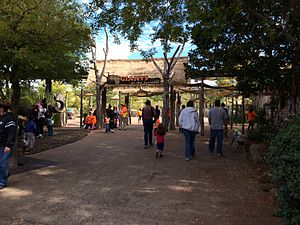 Dallas Zoo - Giants of the Savanna