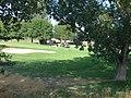 Golfers on the Spanish Oaks golf course in Spanish Fork, Utah, Jul 15.jpg
