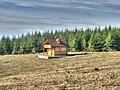 Golija - panoramio (9).jpg