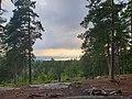 Grønliåsen utsikt vest.jpg