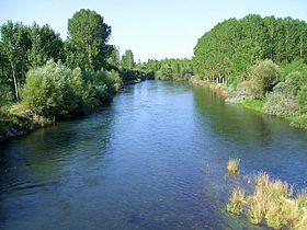 Gradefes - rio Esla.jpg
