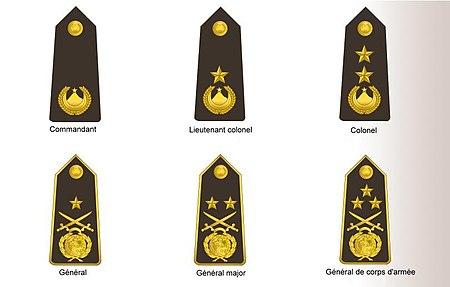شارات الخاصة برتب القوات البحرية الضباط السامين و العمداء