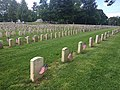 Graves at Antietam National Cemetery (b7550f13-3194-4d18-ac87-5bc6d42e698a).jpeg