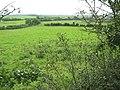 Grazing land south of the Rhoscefnhir lane - geograph.org.uk - 945409.jpg