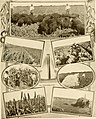 Great San Antonio, the city of destiny and of your destination (1918) (14598334937).jpg