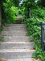 Green Steps - geograph.org.uk - 446259.jpg
