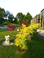 Gryshko Botanical Garden (May 2019) 10.jpg