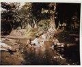 Guam women washing laundry in stream, June 1945.tif