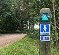 Hærvejen nær Rørbæk Sø.jpg