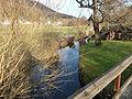 Högenbach an der Weidenmühle 2016-03-10 16.20.08.jpg