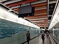 HK 港鐵 MTR 南港島線 South Island Line 利東邨站 Lei Tung Station January 2021 SS2 wall art 22.jpg