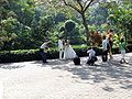 HK HongKongPark Wedding.JPG