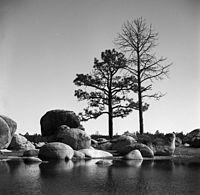 Hansons lagoon - laguna hanson.jpg