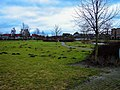 Harderwijk - Drielanden - Ouverturepad - View ENE II.jpg
