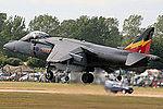 Harrier (5133075222).jpg