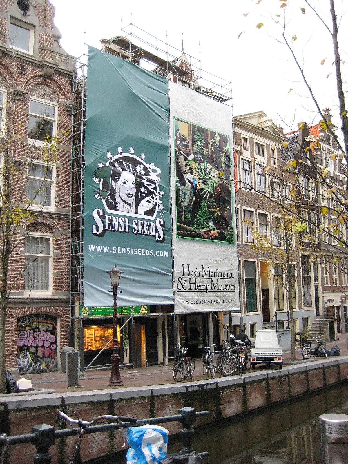 Hash marihuana hemp museum wikidata for Amsterdam museum