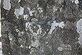 Hautpoul - Ancienne borne frontière 2.jpg