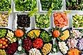 Healthy food ingredients.jpg