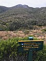 Heaphy Track - to Mt Perry.jpg