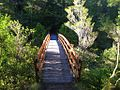 Heaphy Track bridge over Brown River - panoramio.jpg