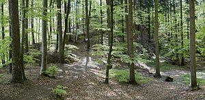 Heiligenberg-062 pano.jpg