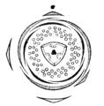 Helianthemum vulgare flowerdiagram.png