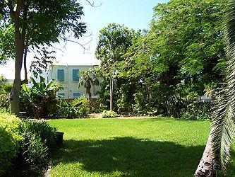 Hemingway House side yard.jpg