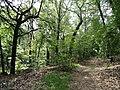 Hemlock Gorge (Charles River Reservation) - DSC09480.JPG