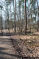 Hildener Heide 2016 070.jpg