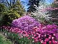 Hillwood Gardens in April (16977402103).jpg