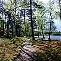 Horla, Västra Götaland, Sverige (49280649342).jpg