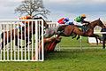 Horse racing (3309218691).jpg