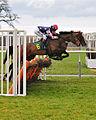 Horse racing (3310050782).jpg