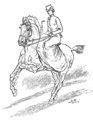 Horsemanship for Women 096.png