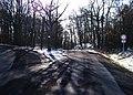 Housinské sedlo, silnice na Neumětely.jpg