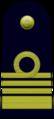 IT-Navy-OF-5-s.png