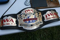 An image of the IWA Mid-South Light Heavyweight Championship.