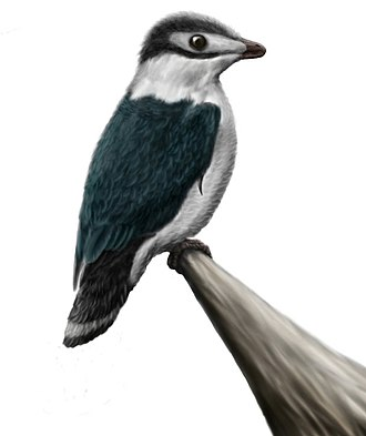 Enantiornithes - A life restoration of Iberomesornis, an early enantiornithean