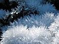 Ice crystals - panoramio (1).jpg