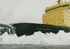 Icebreaker and penguins.jpg