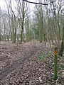 Icknield Way - geograph.org.uk - 1634976.jpg