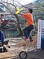 Inokashira park (33318802788).jpg