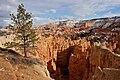Inspiration Point, Bryce Canyon National Park (3447057562).jpg