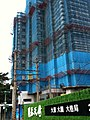 Iphone試拍..相機型號:Apple iPhone 3GS - panoramio (11).jpg