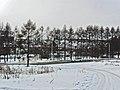 Irkutsk. Akademgorodok. February 2013 - panoramio (132).jpg