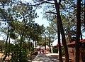 Isla de Tavira (Portugal) (21951005202).jpg