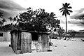 Island Kitchen (404447619).jpg